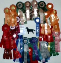 Cosmo's 1999-2000 Ribbons